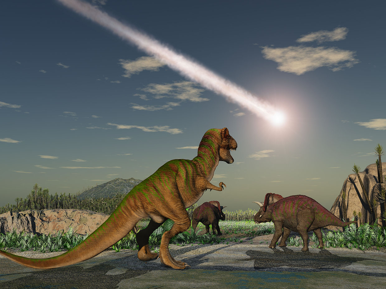 illustration of dinosaurs looking at meteor