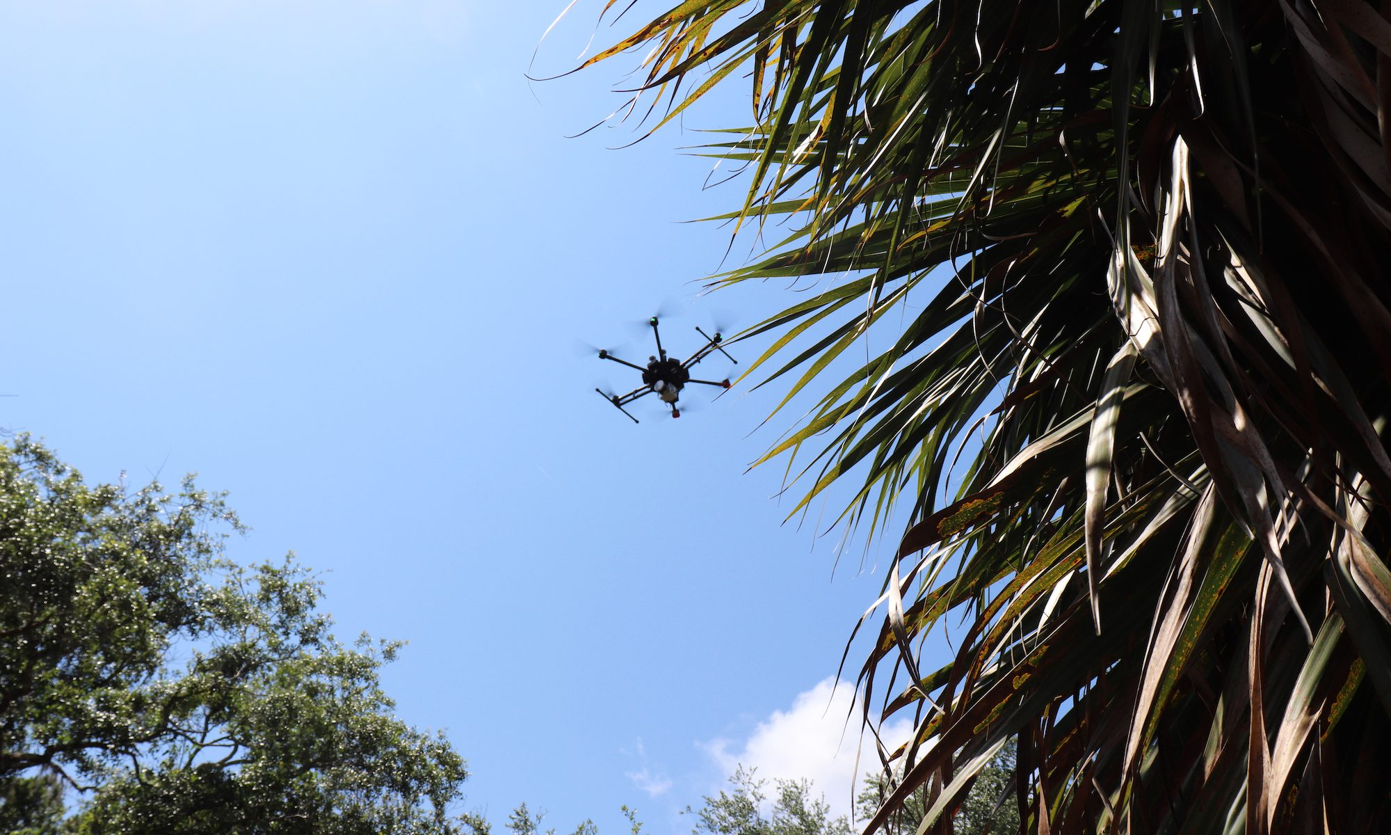 Drone Flying Over Raleigh Island Settlement